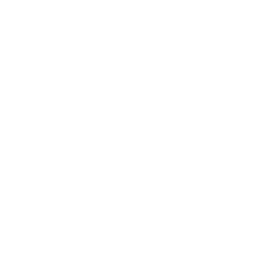 vsr_s24_logo_featured_store